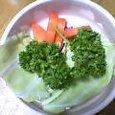 野菜食餌一例